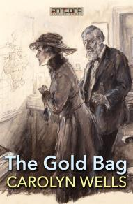 Cover for The Gold Bag
