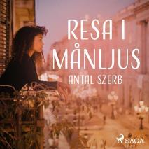 Cover for Resa i månljus