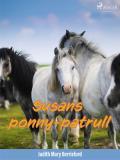 Omslagsbild för Susans ponny-patrull