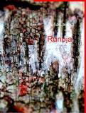 Omslagsbild för RUNOJA