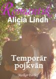 Cover for Temporär pojkvän