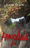 Omslagsbild för Amygdala