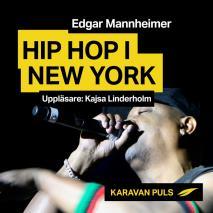 Omslagsbild för Hiphop i New York
