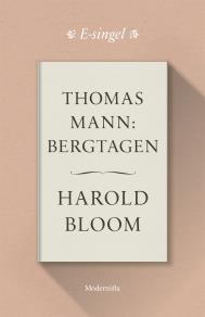 Omslagsbild för Thomas Mann: Bergtagen