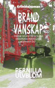 Omslagsbild för Bränd vänskap: Kriminalroman