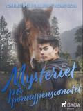 Omslagsbild för Mysteriet på ponnypensionatet