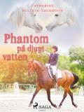 Omslagsbild för Phantom på djupt vatten