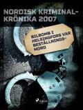 Cover for Bilbomb i Helsingfors var beställningsmord