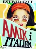 Omslagsbild för Amik i Italien