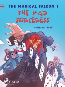 Cover for The Magical Falcon 1 - The Mad Sorceress