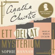 Cover for Ett delat mysterium