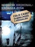 Omslagsbild för Cold case? Dubbelmord i Högdalen