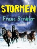 Omslagsbild för Stormen