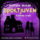 Cover for Spöktjuven