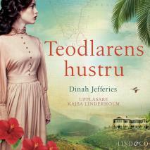 Cover for Teodlarens hustru