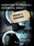 Omslagsbild för Mord i Odense