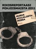Omslagsbild för Murha kivijalostamossa