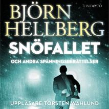 Cover for Snöfallet och andra spänningsberättelser