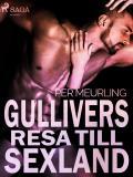 Omslagsbild för Gullivers resa till sexland