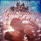 Bokomslag för Godsägarens hemlighet 1 – en erotisk julberättelse