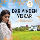 Cover for Misstankar: En släkthistoria