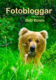 Cover for Fotobloggar 2011-2013