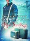 Omslagsbild för Amerikafebern eller Svenska öden i Amerika