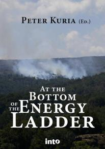 Cover for At the bottom of the energy ladder