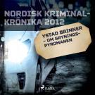 Omslagsbild för Ystad brinner – om Gryningspyromanen