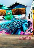 Bokomslag för Graffiti: Poetdjäveln