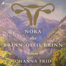 Cover for Nora eller Brinn Oslo brinn