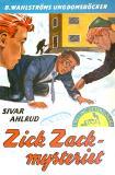 Omslagsbild för Tvillingdetektiverna 22 - Zick-zack-mysteriet