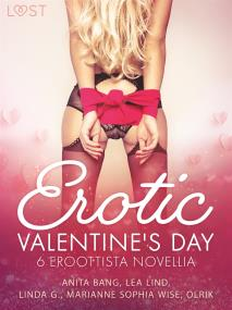 Cover for Erotic Valentine s Day - 6 eroottista novellia