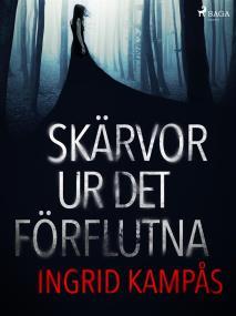 Cover for Skärvor ur det förflutna