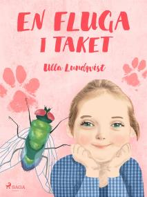 Cover for En fluga i taket