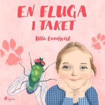 Cover for En fluga i taket