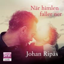Cover for När himlen faller ner