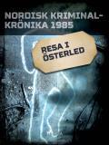 Omslagsbild för Resa i österled