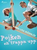Cover for Pojken en trappa upp