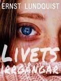 Cover for Livets irrgångar