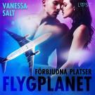 Cover for Förbjudna platser: Flygplanet