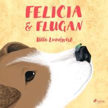 Cover for Felicia och flugan