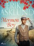 Cover for Mormon Boy