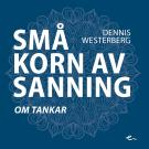 Cover for Små korn av sanning om tankar