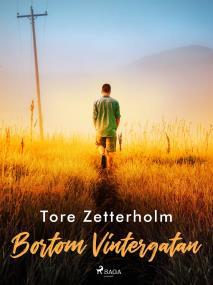 Cover for Bortom Vintergatan