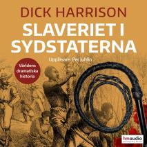 Cover for Slaveriet i Sydstaterna