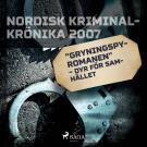"""Cover for """"Gryningspyromanen"""" – dyr för samhället"""