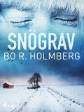 Cover for Snögrav