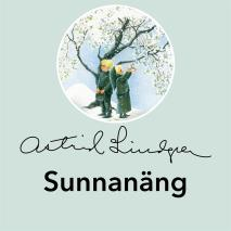 Cover for Sunnanäng