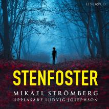 Cover for Stenfoster